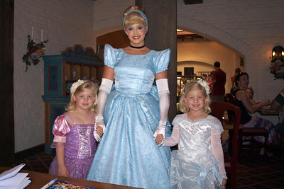 Cinderella was a surprise and one of Sydney's favorites.