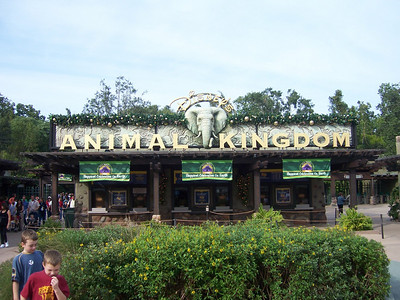 Main gate at Animal Kingdom.