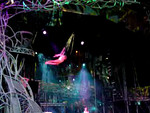 DisneyWorld - 15-18 January 2001