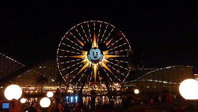Ferris Wheel at night.  Waiting for the 'World of Color' to start.