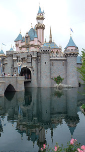 Sleeping Beauty's castle.