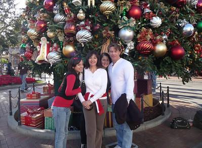Disneyland - December 10, 2008