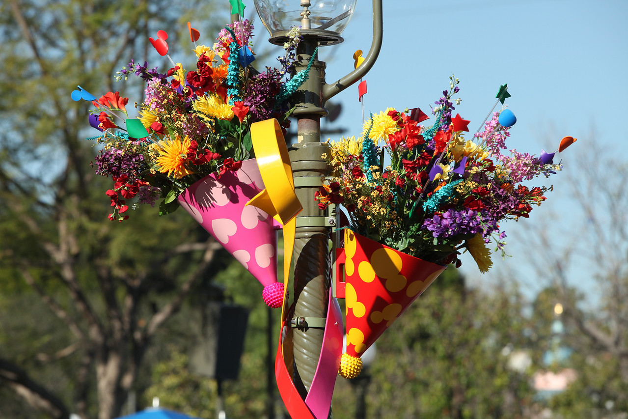 A colourful arrangement.