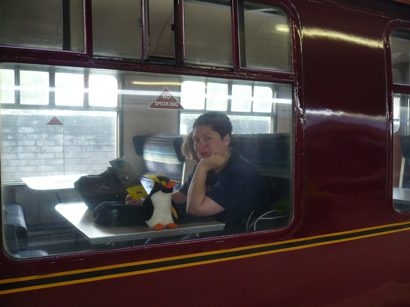 Tier and Gred on the Hogwart's Express