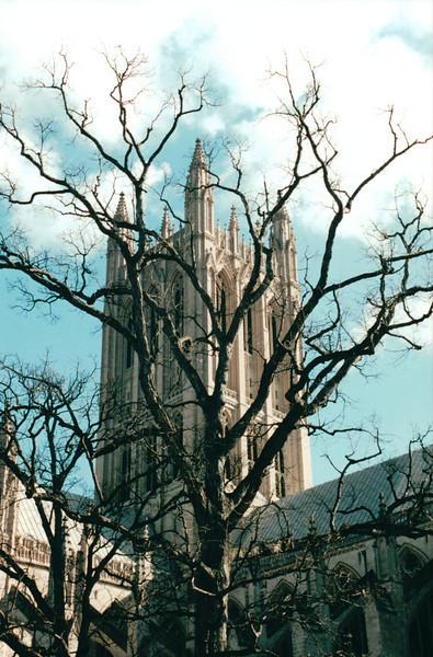 Washington National Cathedral - Washington, DC  1-25-01