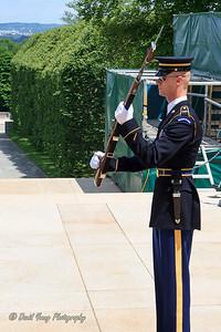 memorial day-27_May 24, 2014