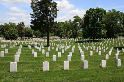 memorial day-4_May 24, 2014