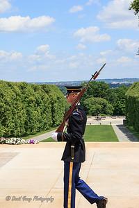 memorial day-35_May 24, 2014