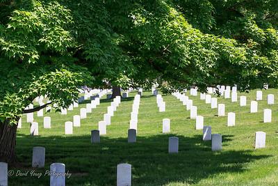 memorial day-17_May 24, 2014