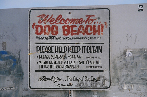 Dog Beach San Diego