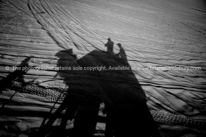 Shadow camel ride