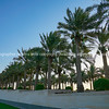 The Corniche on Doha, a pedestrian walkway along harbour edge