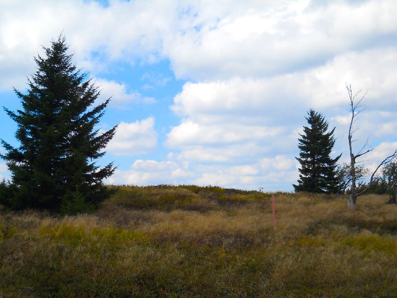 Raven Ridge trail, near Rocky Ridge.