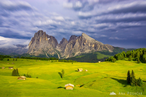 Dramatic later afternoon light at Alpe di Siusi