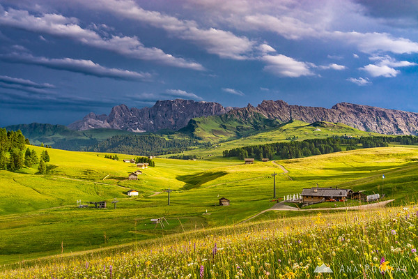 Dramatic late afternoon light at Alpe di Siusi