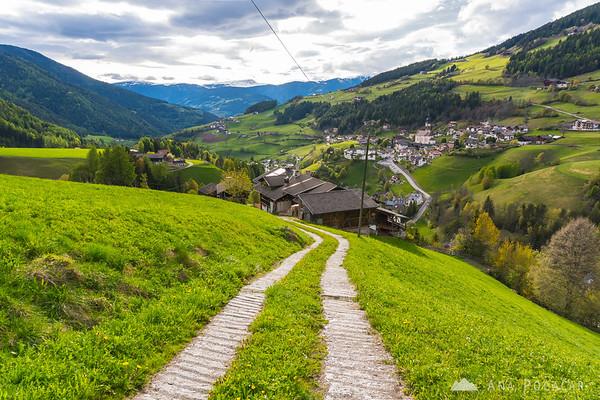 Spring meadows of Val di Funes
