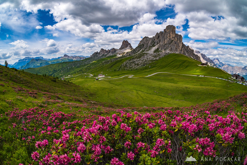 A wonderful summer day at Passo Giau with blue skies and white puffy clouds