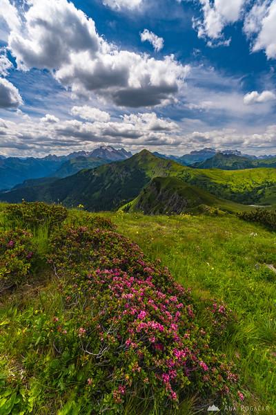 Views towards Marmolada from Passo Giau