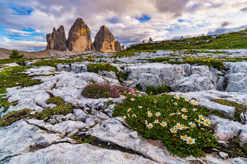 Tre Cime in the late afternoon light
