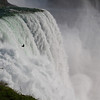 A bird flying over the American falls at Niagara Falls.