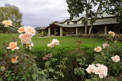 """The winery was used in the Sideways movie, but its name was changed to the """"Fress Canyon"""" winery."""