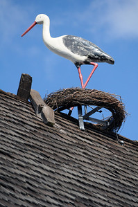 ...to the wooden storks on the top of its roofs, a Danish symbol of good luck.