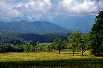 We began in Cades Cove, an isolated valley located in what is today the Great Smoky Mountains National Park.