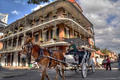 The quintessential New Orleans scene - a horse-drawn carriage making its way through the French Quarter with the city's characteristic wrought-iron balconies in the background.