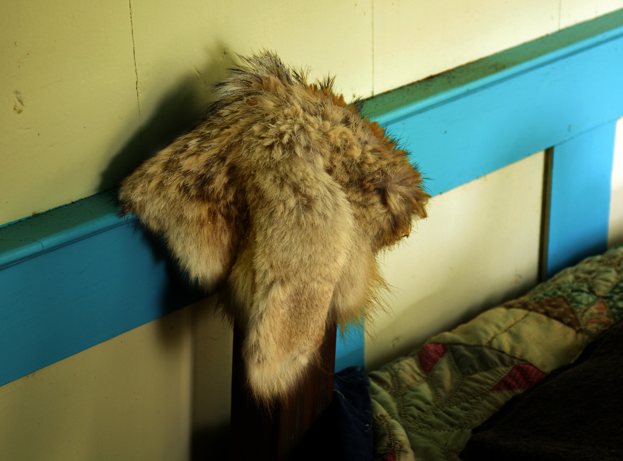 "Having been especially attached to my own coonskin cap - back in the days of Fess Parker and the Daniel Boone TV show - I was glad to see a ""real"" one on the bedpost."