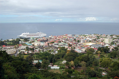 Regal in Dominica