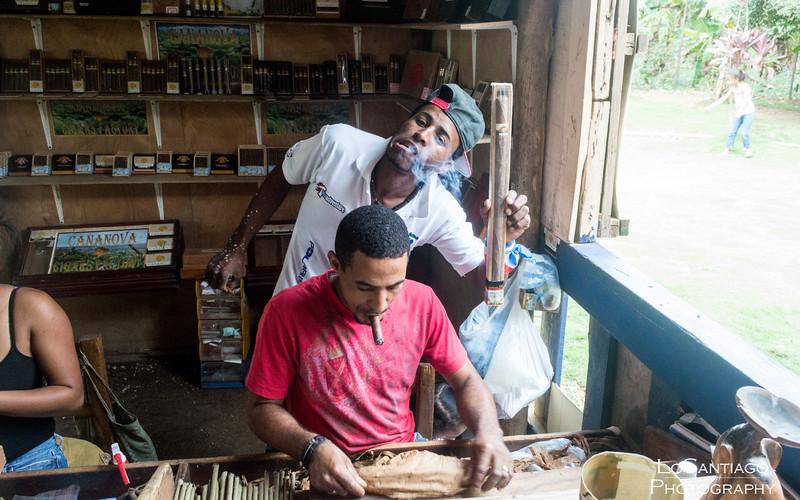 Dominican Republic - 2013 Vacation