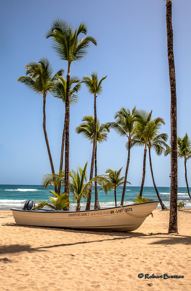 Boat under the Palms