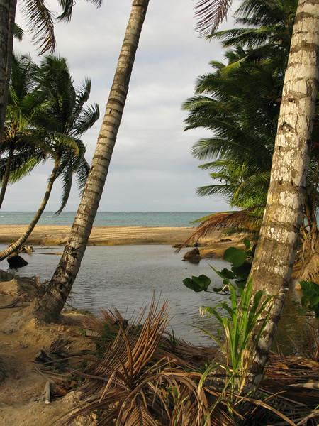 Las Terrenas, on the Dominican Republic's Samaná Peninsula
