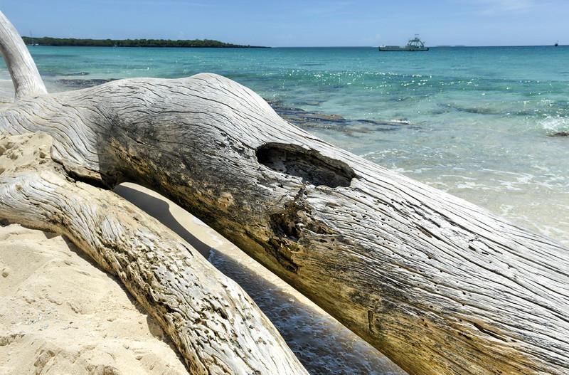 Beach along Isla Catalina, Dominican Republic