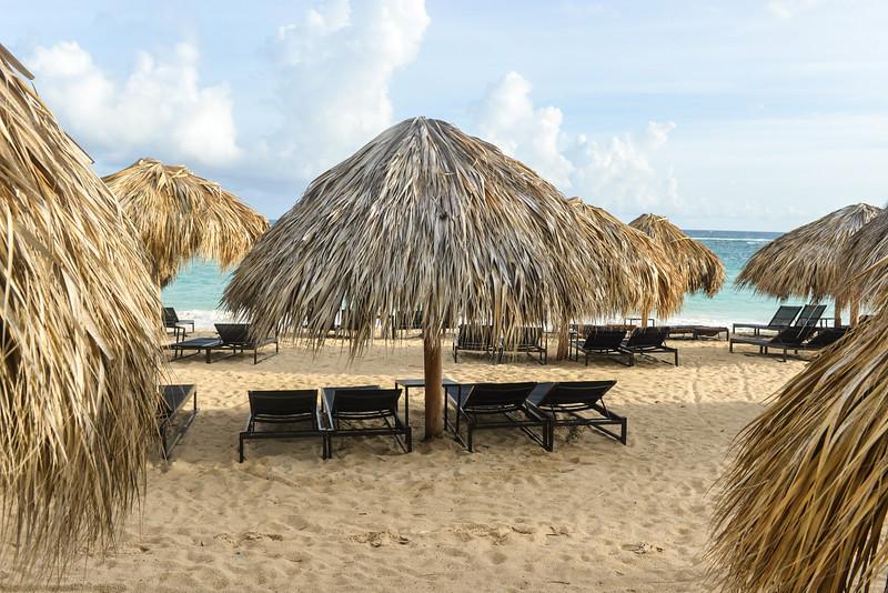 Beach Umbrella of Palm, Dominican Republic