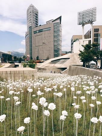 Dongdaemun Design Plaza Sept 2015