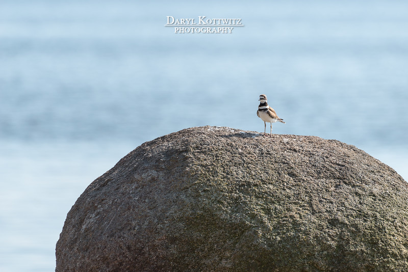 Looking On, While on the Rock