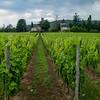 Dordogne France Leica M9 + Tri-Elmar f4 MATE