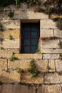 Window and Greenery in southern France