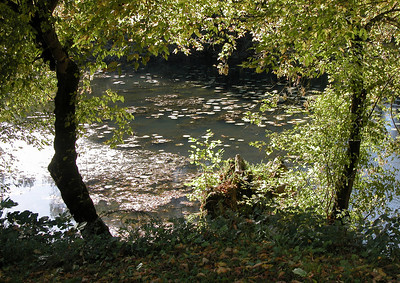 A backwater of the Dordogne at Bigaroque