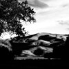Twizel campground