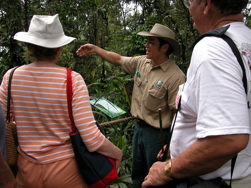 Guided tour in the Rainforest, part way down the Sky Rail.