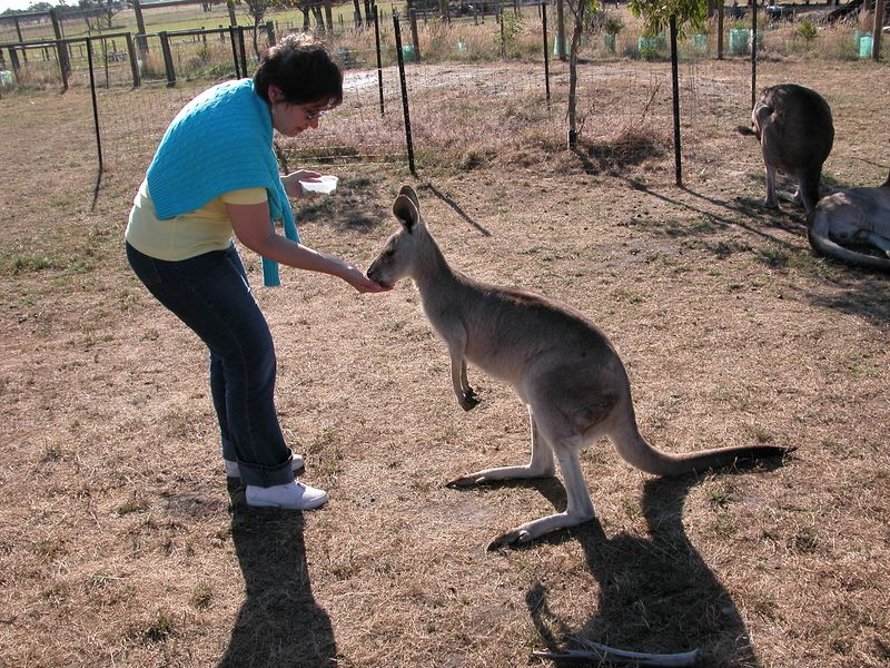 Judy and a kangaroo