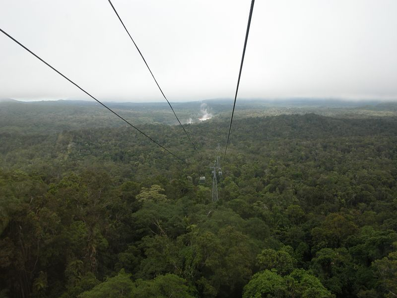 View from Sky Rail.  Steam in the background is mist rising from the Kuranda falls.  This was a very long sky rail.