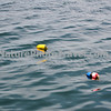 CATCH: Buoys for lobster pots