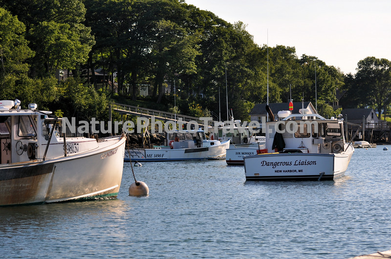 Maine Lobster Boats in Port. New Harbor, ME