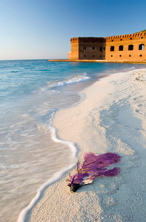Dry Tortugas - Ft. Jefferson - 70 miles from Key West