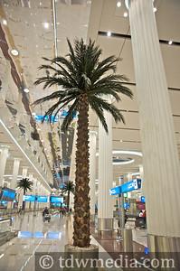 Dubai 1-30-09 23