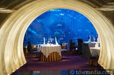 Tango DIva in Dubai 1-31-09  77