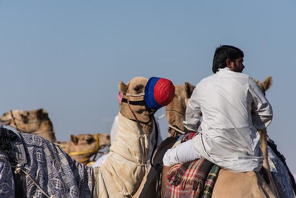 Dubai Day 5
